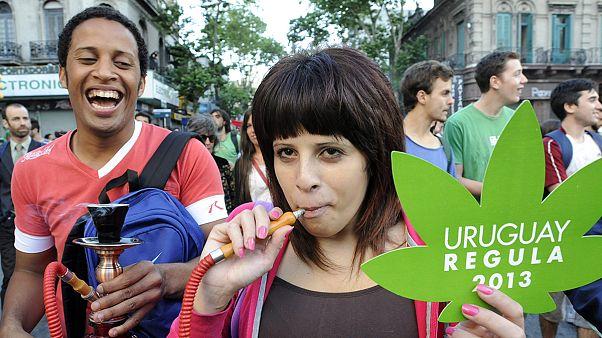 Elég a fűből Uruguayban