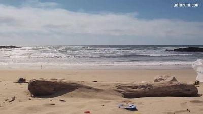 Coastal Cleanup Day (California Coastal Commission)