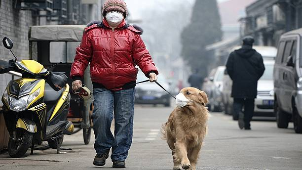 Global warming to 'cause 250,000 extra deaths a year'