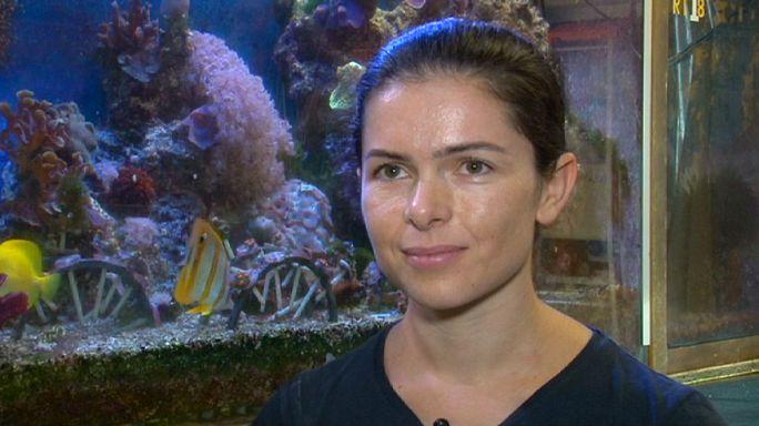 """Stéphanie Orengo : au musée océanographique, """"on ne s'ennuie jamais"""""""