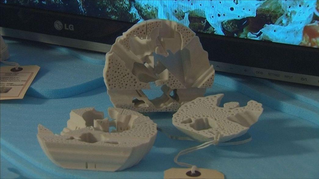 Künstliche Korallen gegen die Übersäuerung im Riff