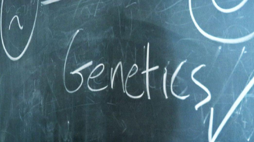 A dánok genomjában rejlik boldogságuk titka?