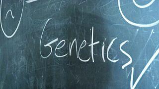 Os dinamarqueses são mais felizes por causa da genética?