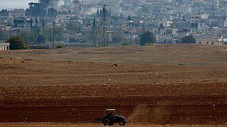 Von Bomben unbeeindruckt - ein Bauer in der Türkei