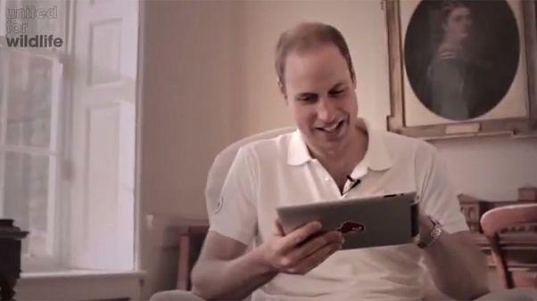 Ο Πρίγκιπας Ουίλιαμ παίζει Angry Birds για καλό σκοπό – Βίντεο