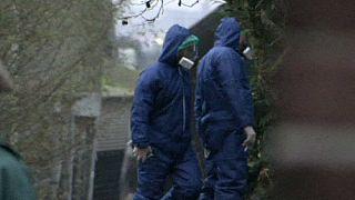 حالة ثانية لإنفلونزا الطيور في هولندا