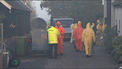 Grippe aviaire : un troisième foyer détecté aux Pays-Bas