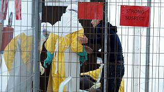 لقاح تجريبي مضاد للايبولا يجتاز اختبارا مبكرا للسلامة.
