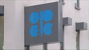 OPEC maintains production levels as oil price drops further