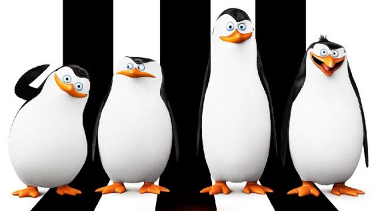 Пингвины-мушкетеры