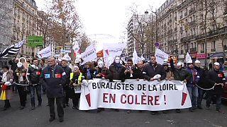 راهپیمایی صاحبان بنگاههای کوچک در پاریس و تولوز