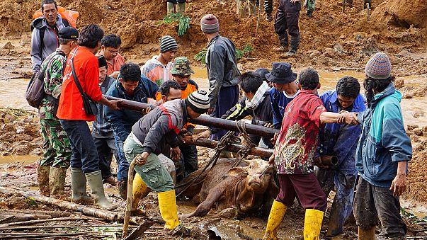 Индонезия: оползень целиком накрыл крупную деревню