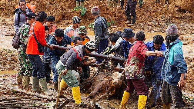 Village destroyed by deadly landslide near Jakarta, Indonesia