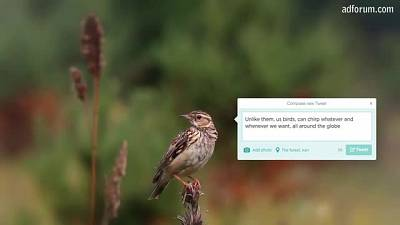 Tweet free as a bird (Reporters Without Borders)