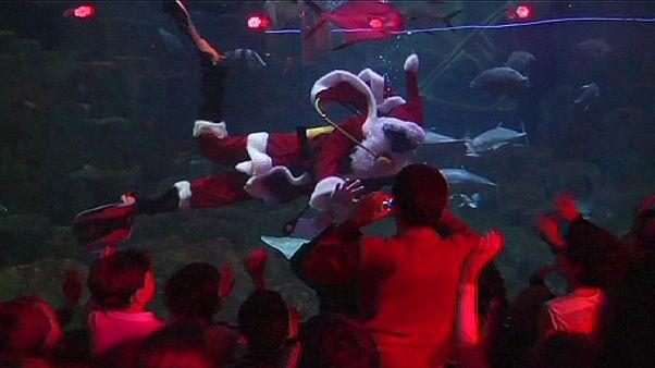 حضور یک بابا نوئل غواص در آکواریومی در پاریس