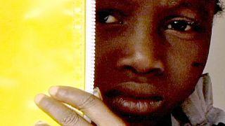 Ebola schadet Westafrikas Wirtschaft massiv