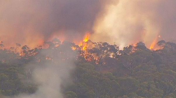 El fuego amenaza el sur de Australia