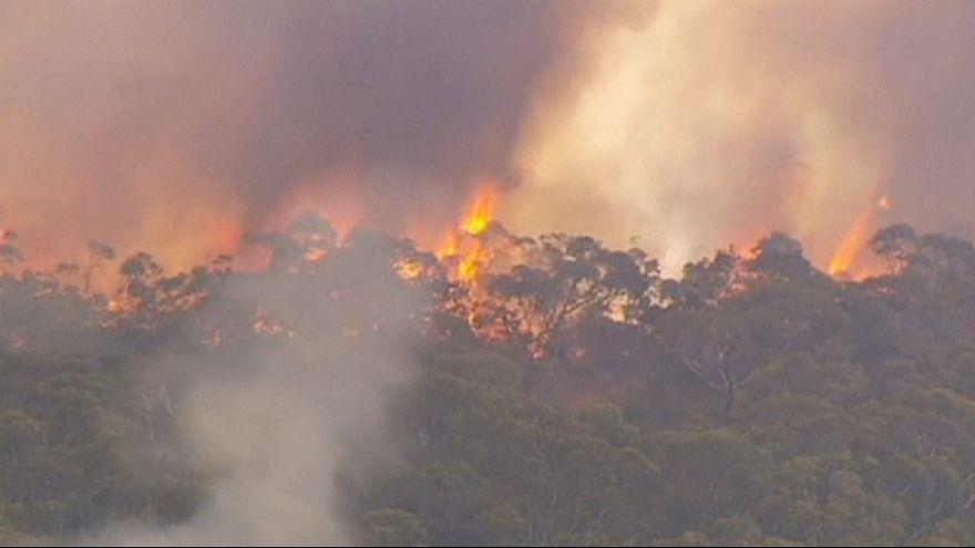 Австралия: жара и ветер вновь привели к пожарам