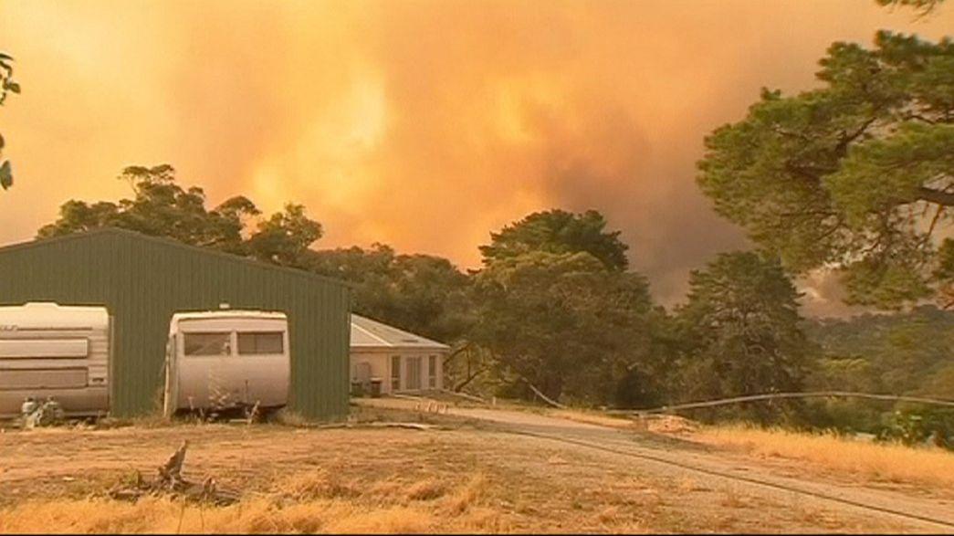 Fogo já consumiu 10 mil hectares da Austrália do Sul e matou diversos animais