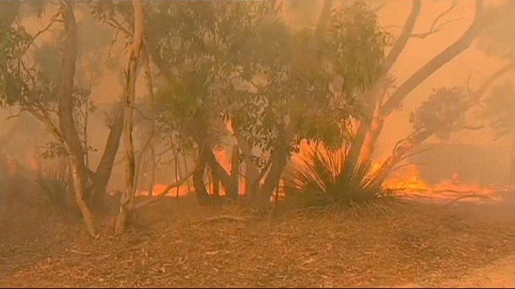 الحرائق تدمر عشرات المنازل في جنوب استراليا