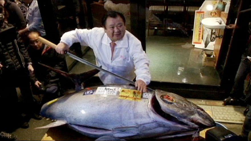32.000 euros por un atún rojo en la primera subasta de Tokio del año