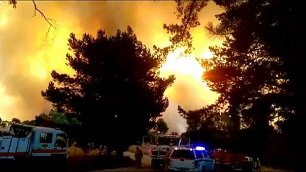South Australia hopes for weather break as fires rage near Adelaide