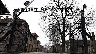 Auschwitz 70 ans : 300 rescapés présents, combien l'an prochain?