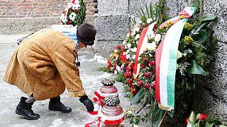 """""""Plus jamais ça"""", 70e anniversaire de la libération du camp d'Auschwitz-Birkenau"""