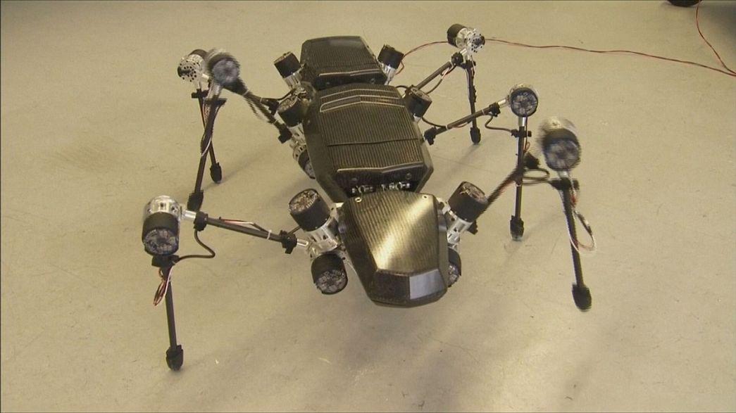 Moi, Hector, robot insecte à six pattes