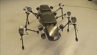 Multiple uses for Hector the stick insect robot