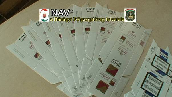 Macaristan'da kaçak sigara operasyonu