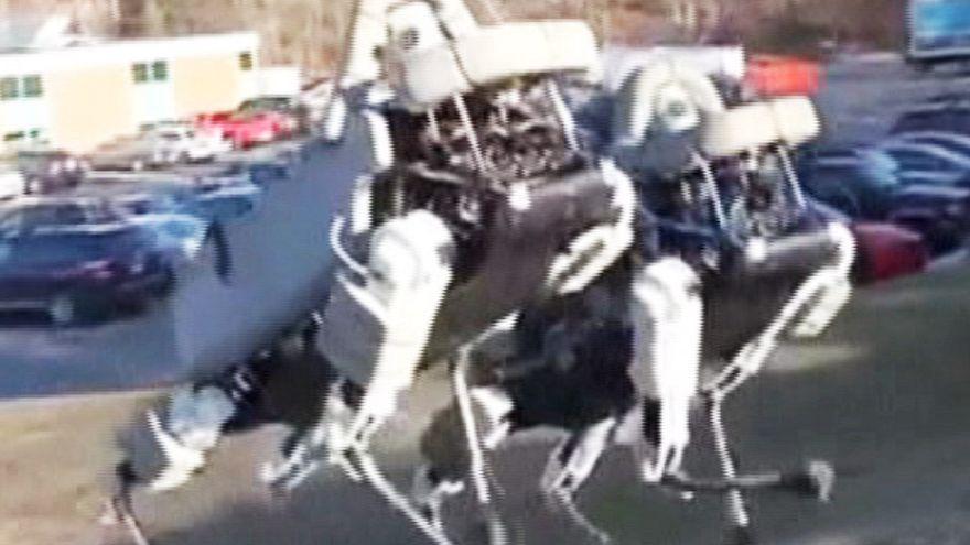 Robot köpek işbaşında