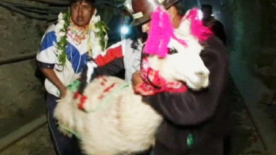 Bolivya'da Lamaların kalbinin yenildiği ayin
