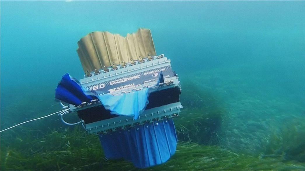 Studenten bauen Unterwasserroboter