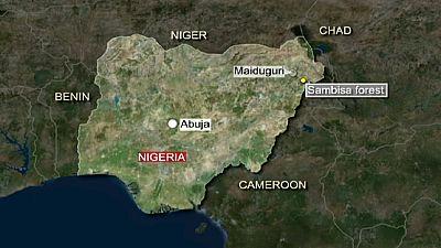 Nigeria says airstrikes have killed 'large number' of Boko Haram militants