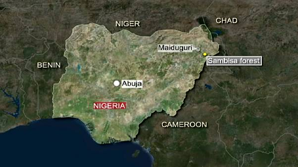 Nigeria says airstrikes have killed 'large number' of Boko Haram militants