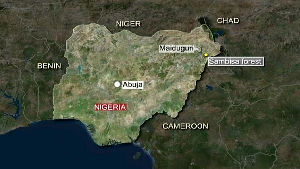 Nijerya uçakları Boko Haram hedeflerini bombaladı