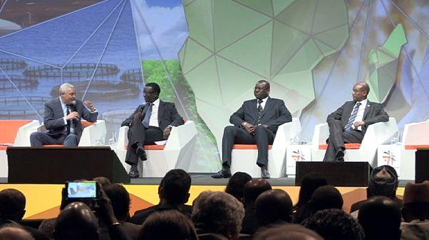 Afrikas Wirtschaft ankurbeln