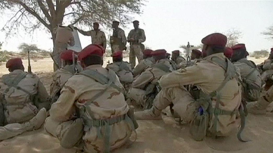Veintiocho países africanos y occidentales unidos contra Boko Haram