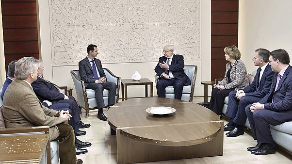 Fransız milletvekillerinden Şam çıkartması