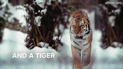 Tiger (WWF/Nike)