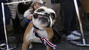 Royal visit helps strengthen ties between Britain and Japan