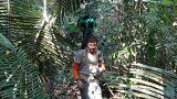 Amazonlar bir tık uzaklıkta