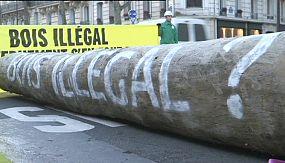 nocom: Greenpeace protesta contra tráfico europeu de madeira