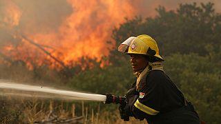 Sud Africa. Finalmente domato l'incendio che imperversava da domenica