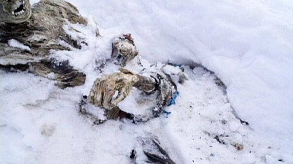 Um abraço de 56 anos sob a neve do pico mais alto do México