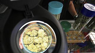 L'Irlande légalise par erreur certaines drogues durant 24 heures