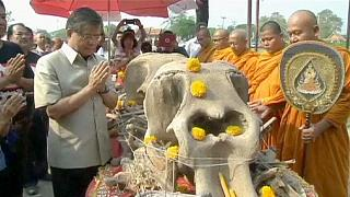 Tailandia celebra el día del elefante