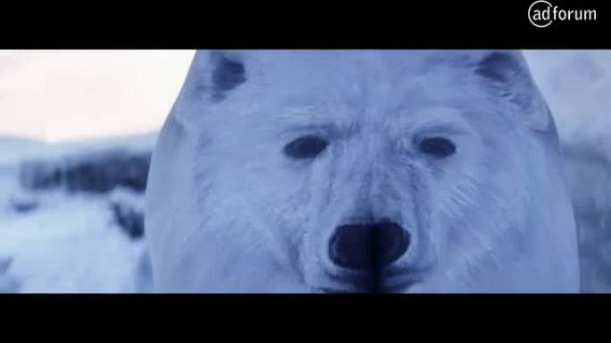 Polar Bear Walking (Colorectal Cancer Association of Canada)