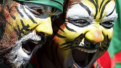 Roaring Tigers